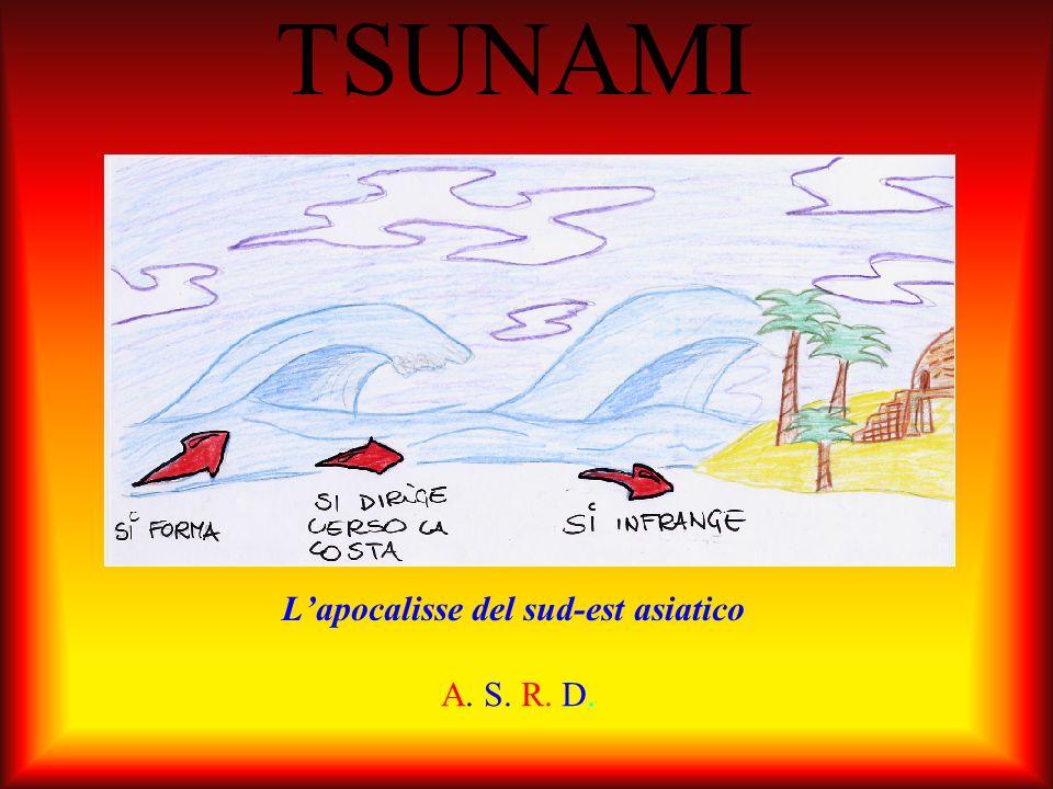 Cosè Lo tsunami è una serie di onde oceaniche.