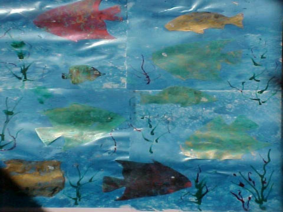 Ho visto nelle nuvole dei tropici, principalmente sul mare e nelle tempeste, tutti i colori che si possono vedere sulla terra...