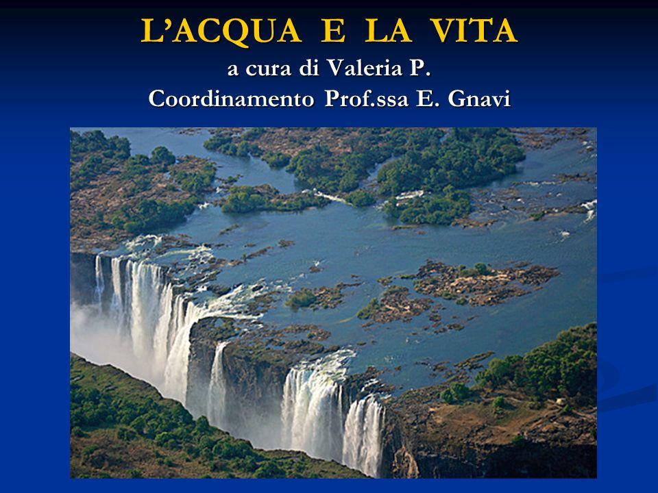 LACQUA E LA VITA a cura di Valeria P. Coordinamento Prof.ssa E. Gnavi