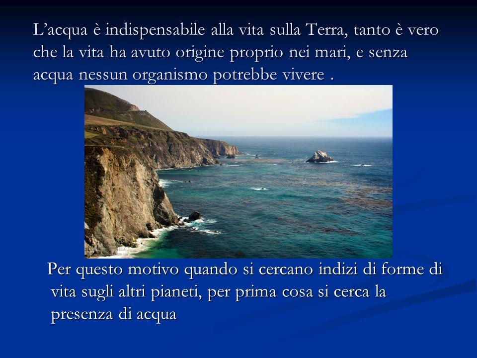 Lacqua è indispensabile alla vita sulla Terra, tanto è vero che la vita ha avuto origine proprio nei mari, e senza acqua nessun organismo potrebbe viv