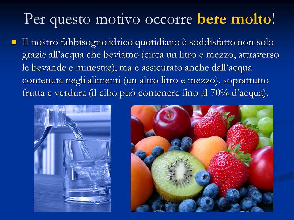 Per questo motivo occorre bere molto! Il nostro fabbisogno idrico quotidiano è soddisfatto non solo grazie allacqua che beviamo (circa un litro e mezz