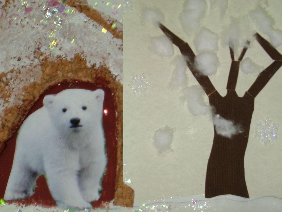 Chiara trova un riparo per il piccolo orso bianco in cerca della sua mamma