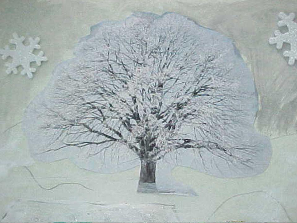 Cè una casetta ammantata di neve dalle grandi finestre che si affacciano su un mondo silenzioso.