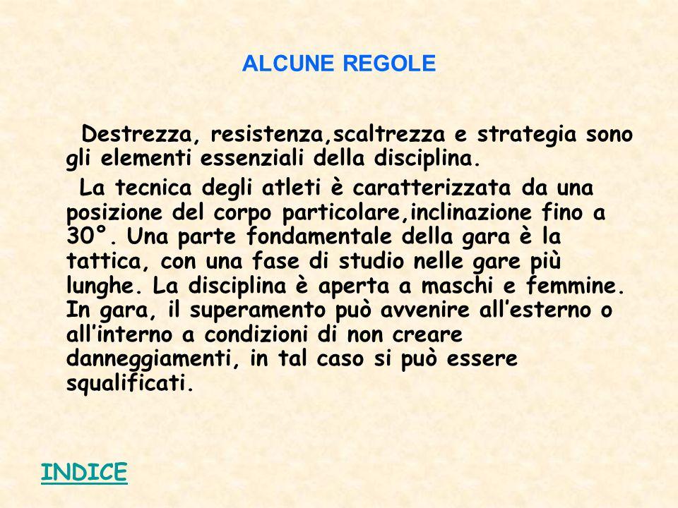 ALCUNE REGOLE Destrezza, resistenza,scaltrezza e strategia sono gli elementi essenziali della disciplina.