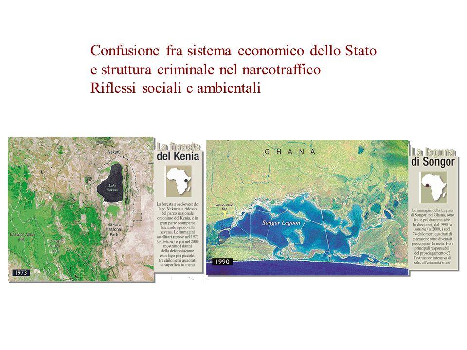 Confusione fra sistema economico dello Stato e struttura criminale nel narcotraffico Riflessi sociali e ambientali