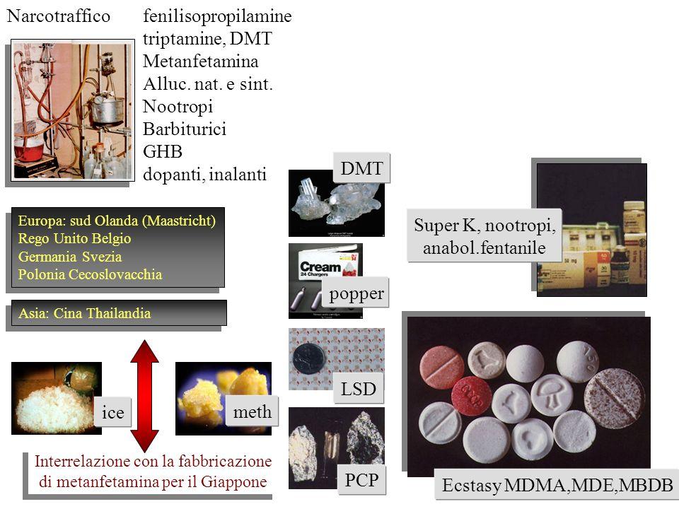 Narcotrafficofenilisopropilamine triptamine, DMT Metanfetamina Alluc. nat. e sint. Nootropi Barbiturici GHB dopanti, inalanti Europa: sud Olanda (Maas
