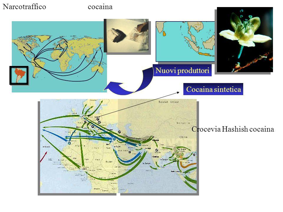 Narcotrafficococaina Nuovi produttori Crocevia Hashish cocaina Cocaina sintetica