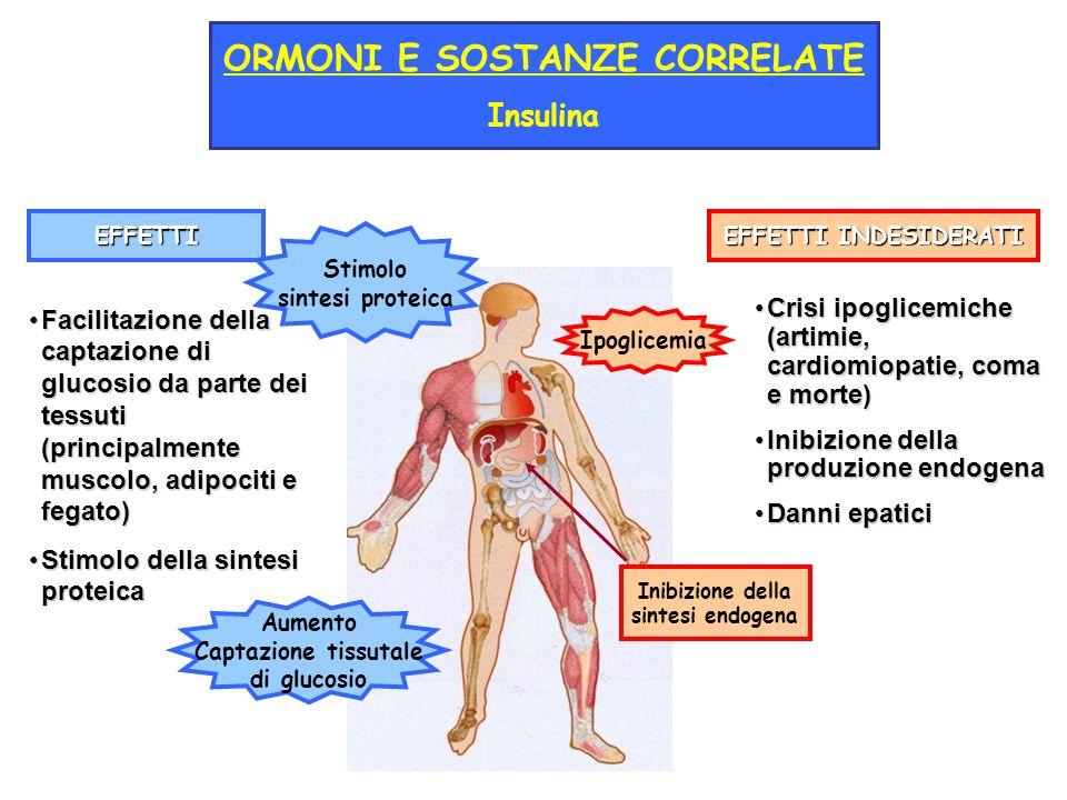 EFFETTI EFFETTI INDESIDERATI Facilitazione della captazione di glucosio da parte dei tessuti (principalmente muscolo, adipociti e fegato)Facilitazione della captazione di glucosio da parte dei tessuti (principalmente muscolo, adipociti e fegato) Stimolo della sintesi proteicaStimolo della sintesi proteica Crisi ipoglicemiche (artimie, cardiomiopatie, coma e morte)Crisi ipoglicemiche (artimie, cardiomiopatie, coma e morte) Inibizione della produzione endogenaInibizione della produzione endogena Danni epaticiDanni epatici ORMONI E SOSTANZE CORRELATE Insulina Inibizione della sintesi endogena Stimolo sintesi proteica Aumento Captazione tissutale di glucosio Ipoglicemia