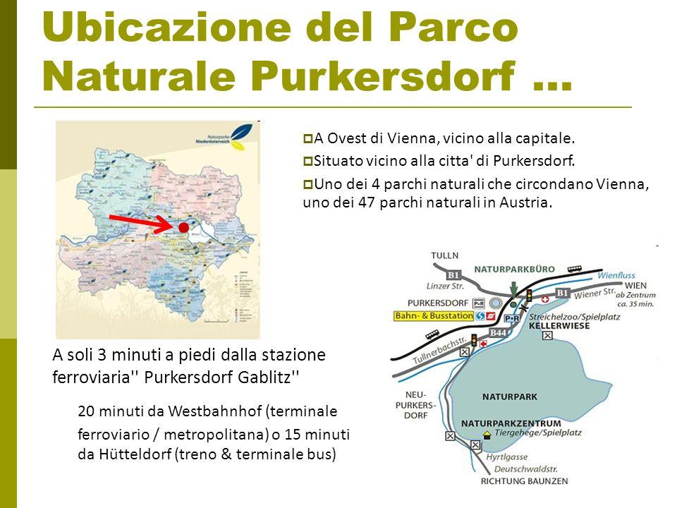 Ubicazione del Parco Naturale Purkersdorf... A Ovest di Vienna, vicino alla capitale. Situato vicino alla citta' di Purkersdorf. Uno dei 4 parchi natu