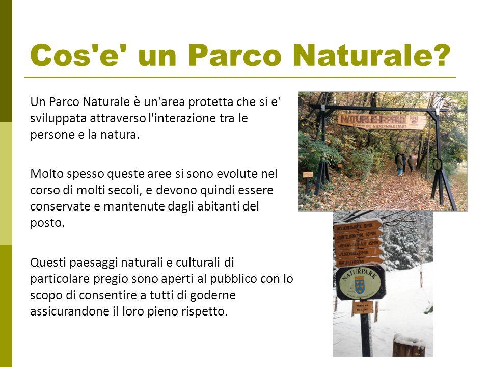 Cos'e' un Parco Naturale? Un Parco Naturale è un'area protetta che si e' sviluppata attraverso l'interazione tra le persone e la natura. Molto spesso