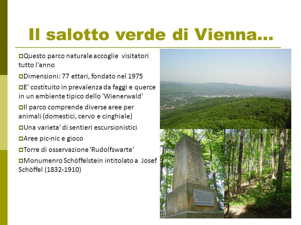 Il salotto verde di Vienna… Questo parco naturale accoglie visitatori tutto l'anno Dimensioni: 77 ettari, fondato nel 1975 E' costituito in prevalenza