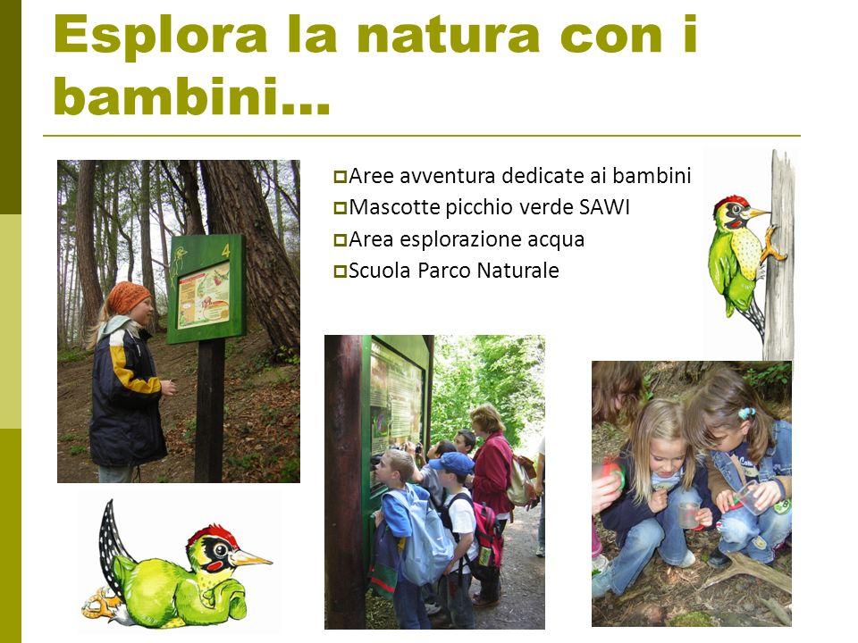Programma Natura Nah Touren 60 visite guidate durante il periodo di attivita del programma Nature Park festival a Settembre Laboratori per bambini