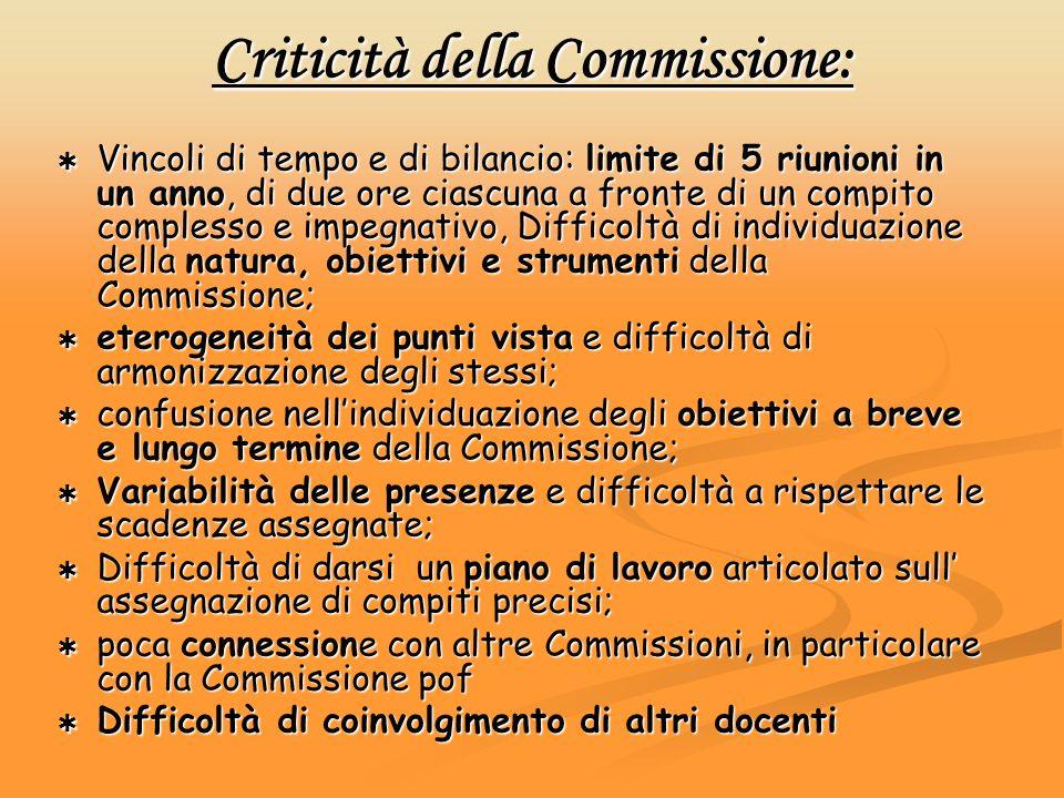 Criticità della Commissione: Vincoli di tempo e di bilancio: limite di 5 riunioni in un anno, di due ore ciascuna a fronte di un compito complesso e i