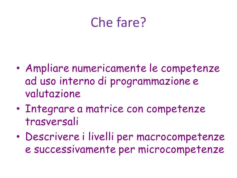 Ampliare numericamente le competenze ad uso interno di programmazione e valutazione Integrare a matrice con competenze trasversali Descrivere i livell