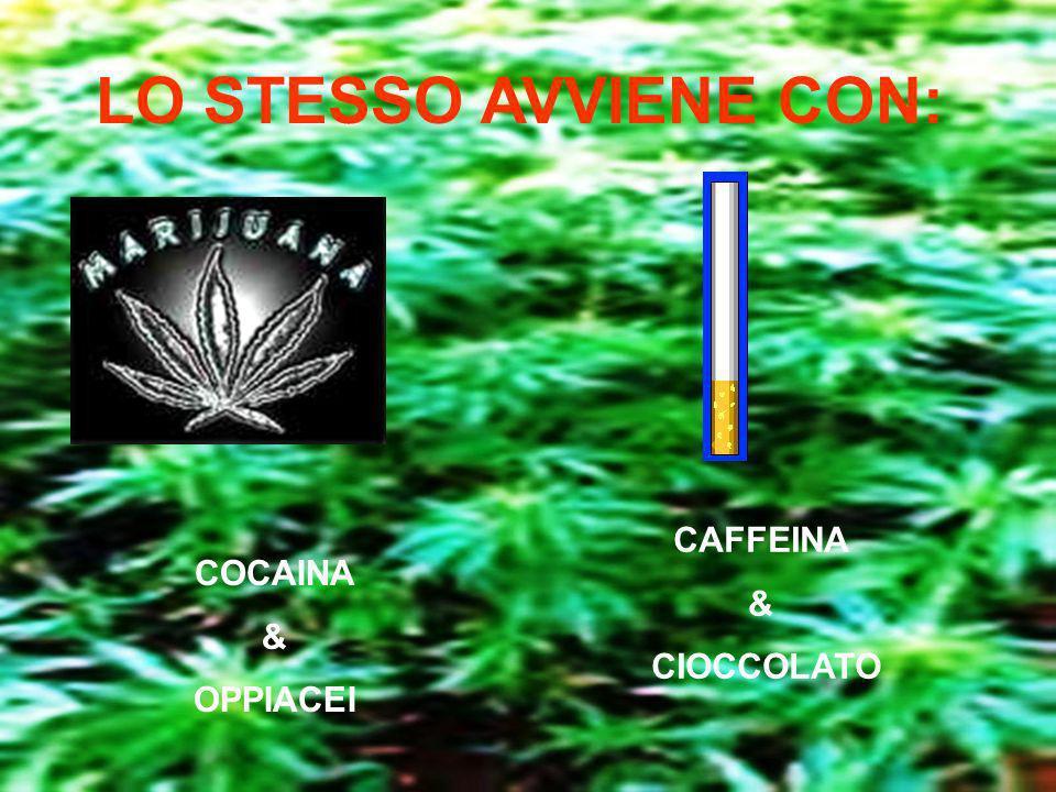 LO STESSO AVVIENE CON: COCAINA & OPPIACEI CAFFEINA & CIOCCOLATO