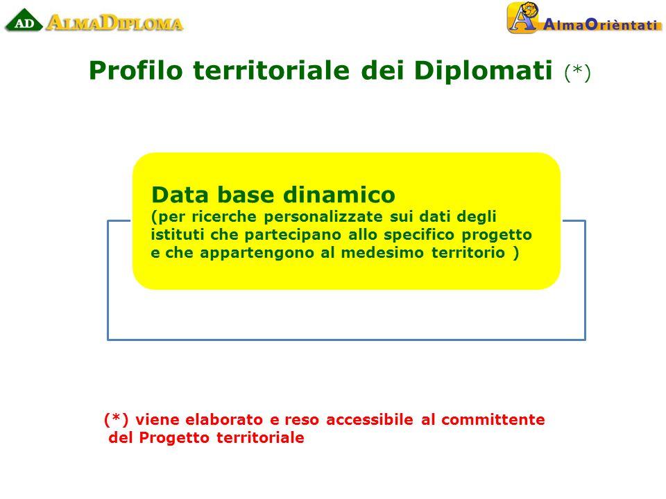 Data base dinamico (per ricerche personalizzate sui dati degli istituti che partecipano allo specifico progetto e che appartengono al medesimo territorio ) Profilo territoriale dei Diplomati (*) (*) viene elaborato e reso accessibile al committente del Progetto territoriale