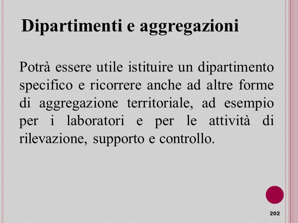 Dipartimenti e aggregazioni 202 Potrà essere utile istituire un dipartimento specifico e ricorrere anche ad altre forme di aggregazione territoriale, ad esempio per i laboratori e per le attività di rilevazione, supporto e controllo.