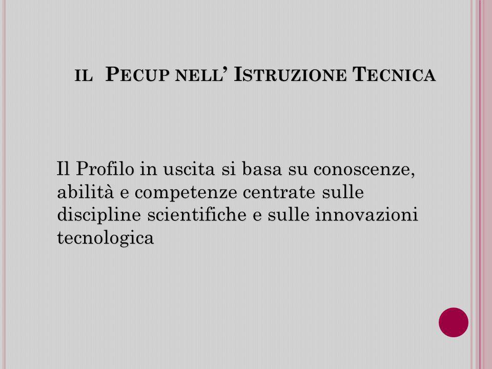 IL P ECUP NELL I STRUZIONE T ECNICA Il Profilo in uscita si basa su conoscenze, abilità e competenze centrate sulle discipline scientifiche e sulle innovazioni tecnologica