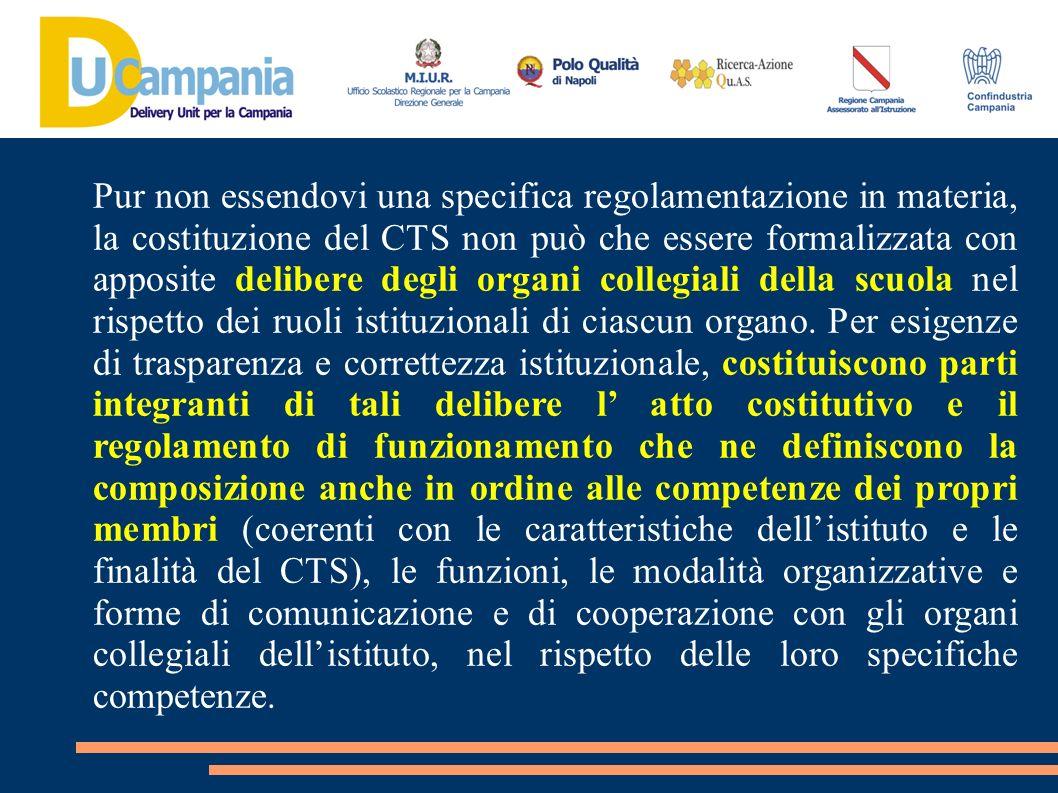 Pur non essendovi una specifica regolamentazione in materia, la costituzione del CTS non può che essere formalizzata con apposite delibere degli organ