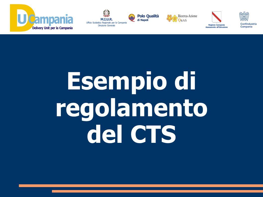 Esempio di regolamento del CTS