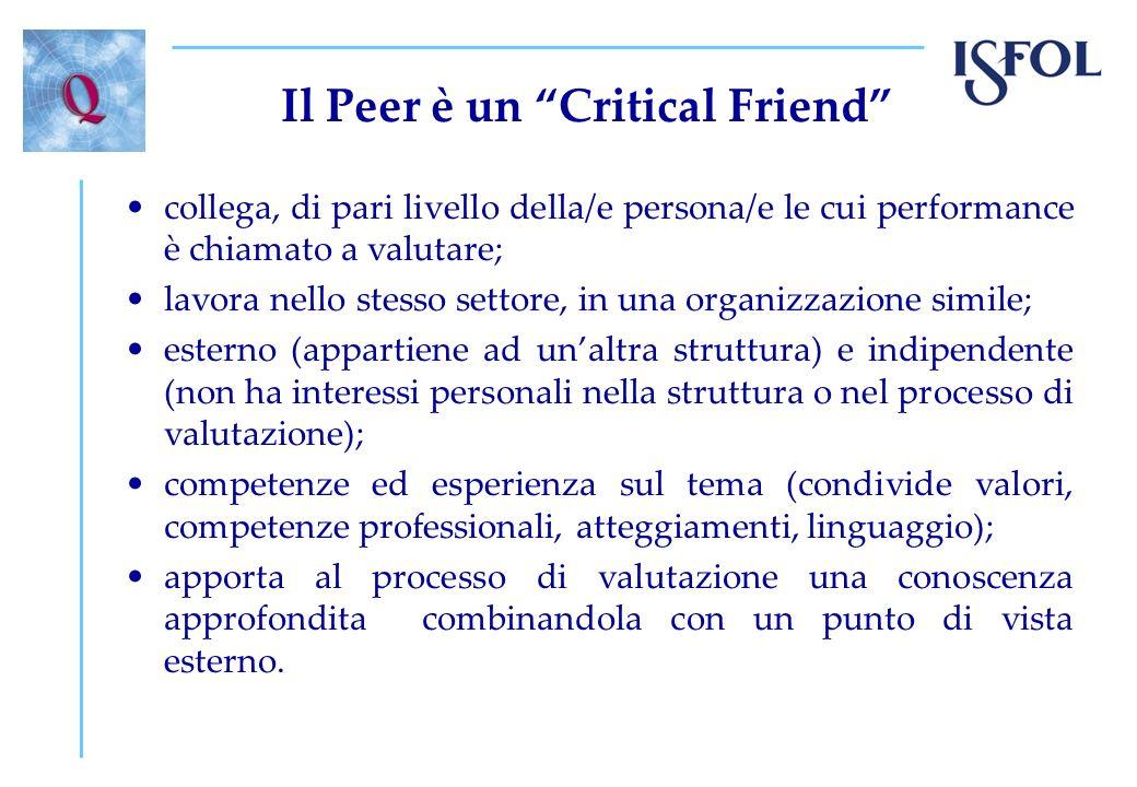 Il Peer è un Critical Friend collega, di pari livello della/e persona/e le cui performance è chiamato a valutare; lavora nello stesso settore, in una