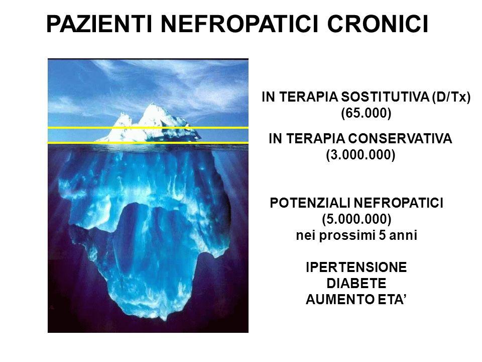 PAZIENTI NEFROPATICI CRONICI IN TERAPIA SOSTITUTIVA (D/Tx) (65.000) IN TERAPIA CONSERVATIVA (3.000.000) POTENZIALI NEFROPATICI (5.000.000) nei prossimi 5 anni IPERTENSIONE DIABETE AUMENTO ETA