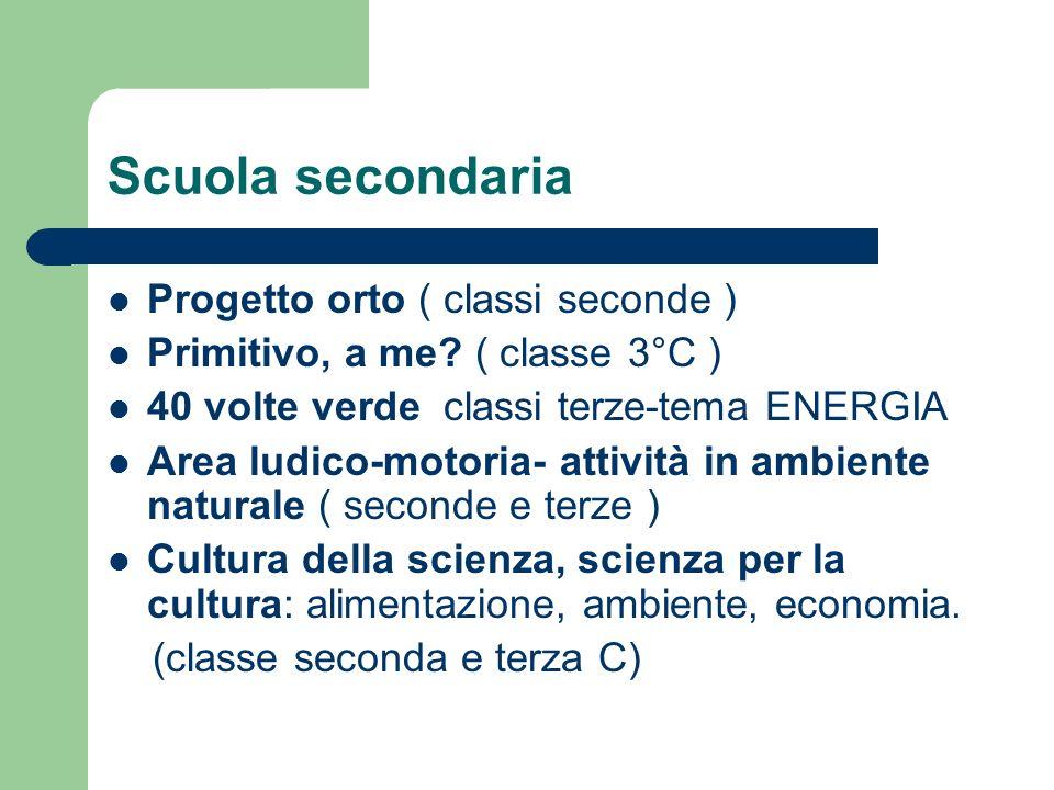 Scuola secondaria Progetto orto ( classi seconde ) Primitivo, a me? ( classe 3°C ) 40 volte verde classi terze-tema ENERGIA Area ludico-motoria- attiv