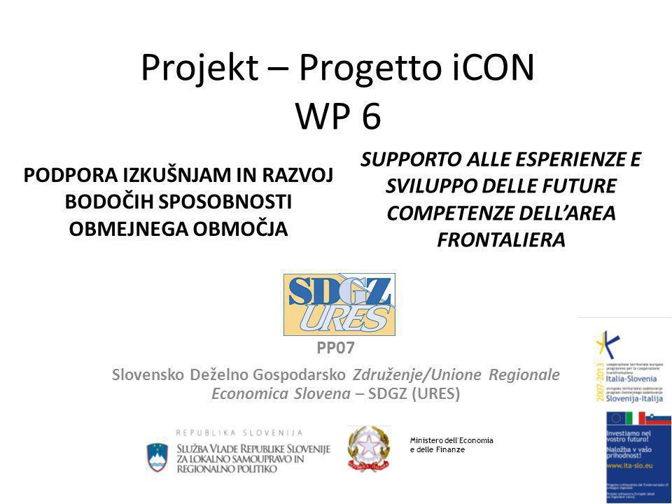 Projekt – Progetto iCON WP 6 PP07 Slovensko Deželno Gospodarsko Združenje/Unione Regionale Economica Slovena – SDGZ (URES) SUPPORTO ALLE ESPERIENZE E SVILUPPO DELLE FUTURE COMPETENZE DELLAREA FRONTALIERA PODPORA IZKUŠNJAM IN RAZVOJ BODOČIH SPOSOBNOSTI OBMEJNEGA OBMOČJA Ministero dell Economia e delle Finanze