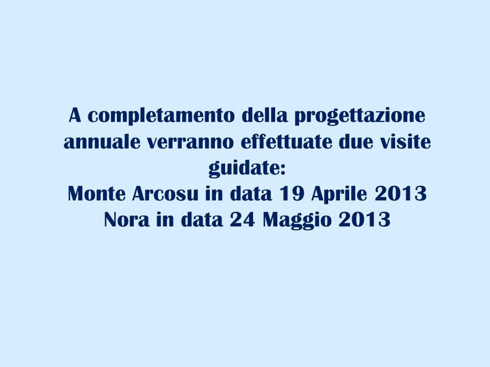 A completamento della progettazione annuale verranno effettuate due visite guidate: Monte Arcosu in data 19 Aprile 2013 Nora in data 24 Maggio 2013
