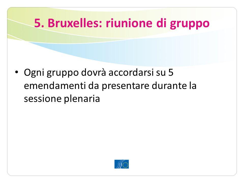 5. Bruxelles: riunione di gruppo Ogni gruppo dovrà accordarsi su 5 emendamenti da presentare durante la sessione plenaria