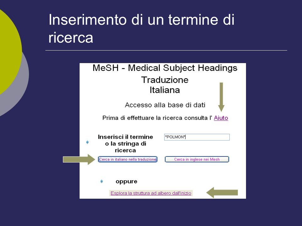 Caratteristiche del TIB (2) Descrittori corredati da definizioni e da note di disambiguazione, es.