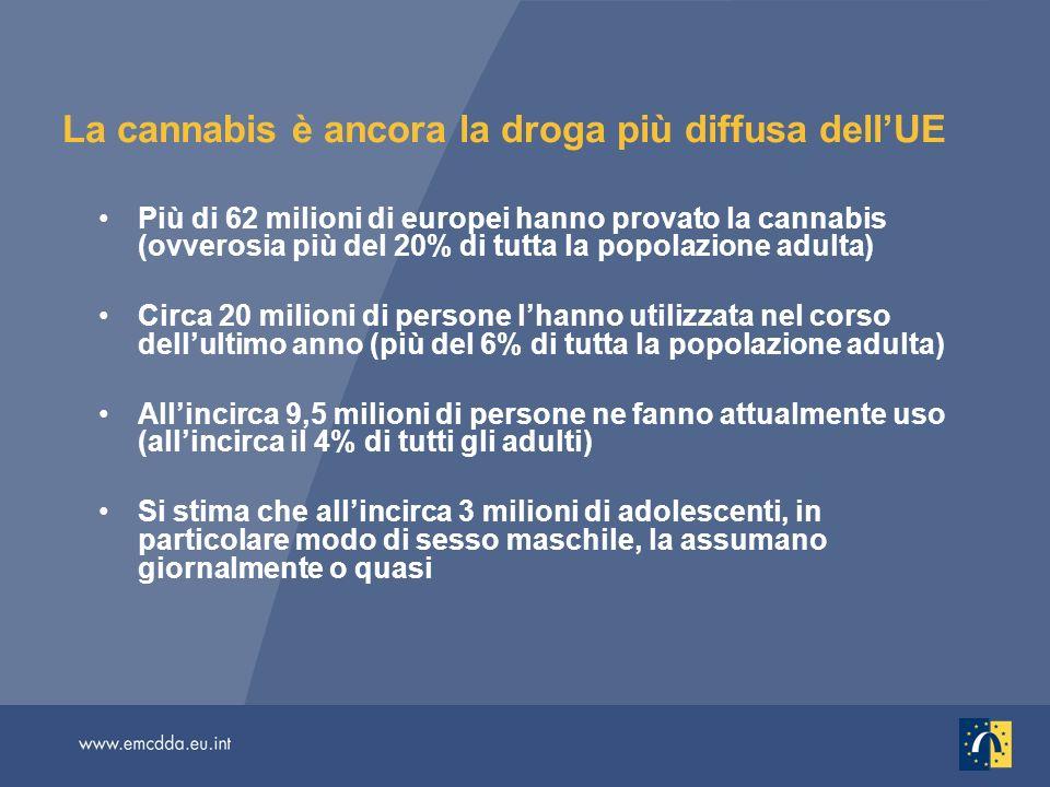 La cannabis è ancora la droga più diffusa dellUE Più di 62 milioni di europei hanno provato la cannabis (ovverosia più del 20% di tutta la popolazione adulta) Circa 20 milioni di persone lhanno utilizzata nel corso dellultimo anno (più del 6% di tutta la popolazione adulta) Allincirca 9,5 milioni di persone ne fanno attualmente uso (allincirca il 4% di tutti gli adulti) Si stima che allincirca 3 milioni di adolescenti, in particolare modo di sesso maschile, la assumano giornalmente o quasi