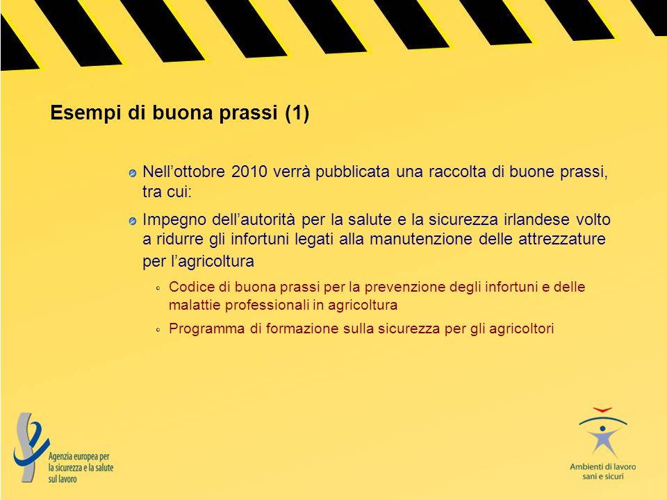 Esempi di buona prassi (1) Nellottobre 2010 verrà pubblicata una raccolta di buone prassi, tra cui: Impegno dellautorità per la salute e la sicurezza
