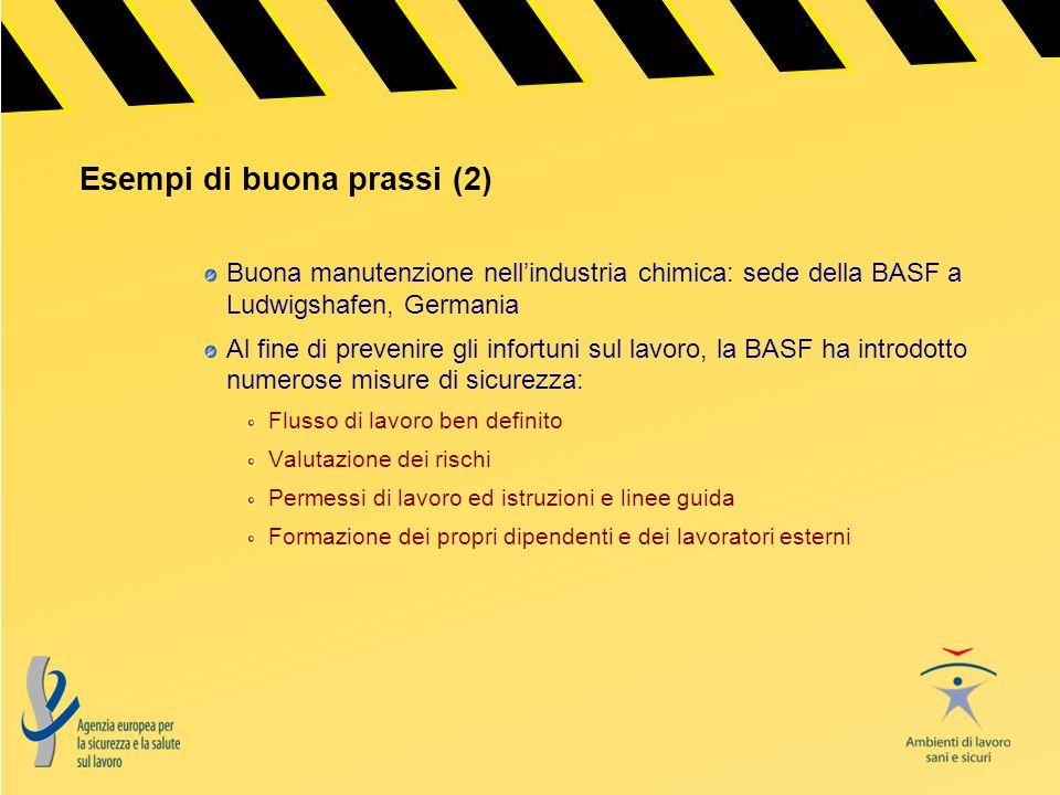 Esempi di buona prassi (2) Buona manutenzione nellindustria chimica: sede della BASF a Ludwigshafen, Germania Al fine di prevenire gli infortuni sul l