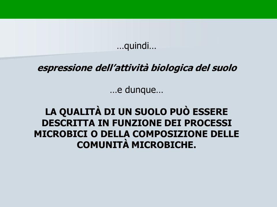…quindi… espressione dellattività biologica del suolo …e dunque… LA QUALITÀ DI UN SUOLO PUÒ ESSERE DESCRITTA IN FUNZIONE DEI PROCESSI MICROBICI O DELL