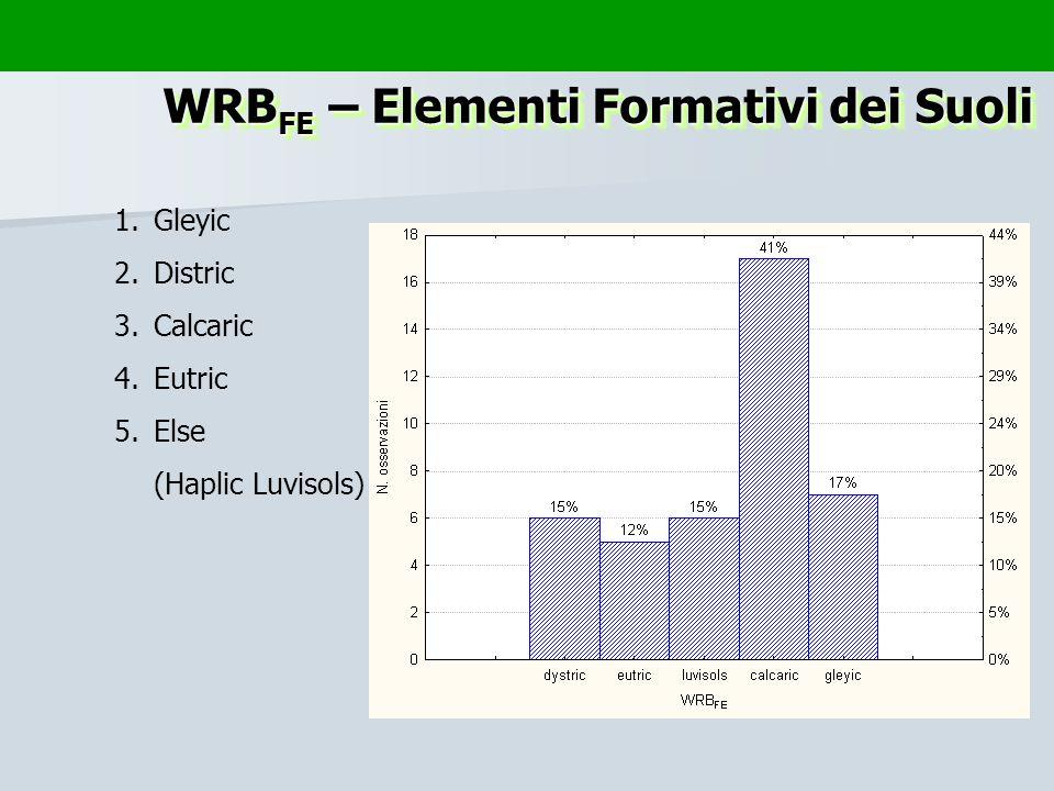 1.Gleyic 2.Distric 3.Calcaric 4.Eutric 5.Else (Haplic Luvisols) WRB FE – Elementi Formativi dei Suoli