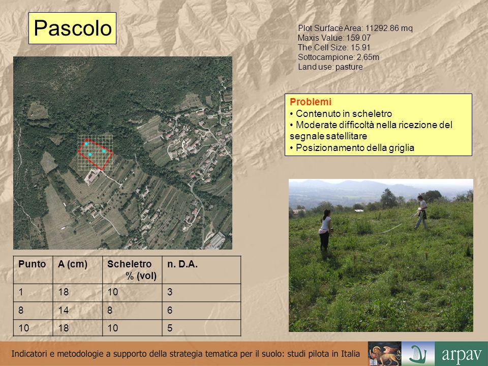 Pascolo Plot Surface Area: 11292.86 mq Maxis Value: 159.07 The Cell Size: 15.91 Sottocampione: 2,65m Land use: pasture PuntoA (cm)Scheletro % (vol) n.