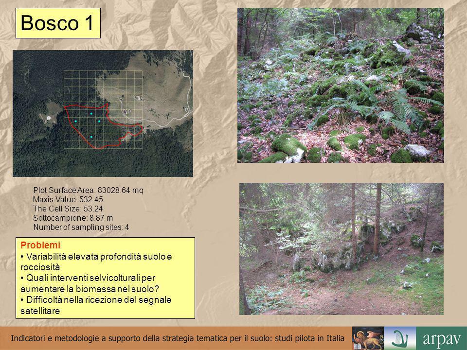 Bosco 2 Plot Surface Area: 13807.39 mq Maxis Value: 181.36 The Cell Siz: 18.14 Sottocampione: 3,02 m Number of sampling sites: 3 Problemi Difficoltà nella ricezione del segnale satellitare Difficoltà di acesso e di posizionamento della griglia Difficoltà campionamento lettiera Quali interventi selvicolturali per aumentare la biomassa nel suolo?