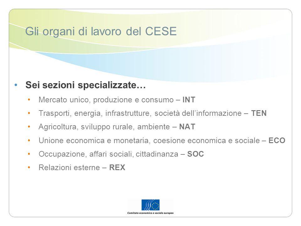 Gli organi di lavoro del CESE Sei sezioni specializzate… Mercato unico, produzione e consumo – INT Trasporti, energia, infrastrutture, società dellinf