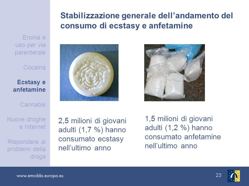23 2,5 milioni di giovani adulti (1,7 %) hanno consumato ecstasy nellultimo anno 1,5 milioni di giovani adulti (1,2 %) hanno consumato anfetamine nell