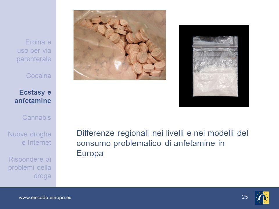 25 Differenze regionali nei livelli e nei modelli del consumo problematico di anfetamine in Europa Eroina e uso per via parenterale Cocaina Ecstasy e