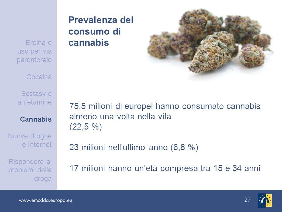 27 75,5 milioni di europei hanno consumato cannabis almeno una volta nella vita (22,5 %) 23 milioni nellultimo anno (6,8 %) 17 milioni hanno unetà com