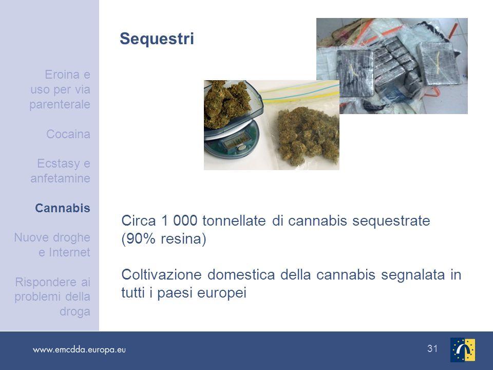 31 Sequestri Circa 1 000 tonnellate di cannabis sequestrate (90% resina) Coltivazione domestica della cannabis segnalata in tutti i paesi europei Eroi