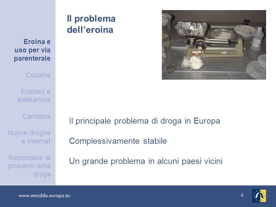 4 Il principale problema di droga in Europa Complessivamente stabile Un grande problema in alcuni paesi vicini Il problema delleroina Eroina e uso per