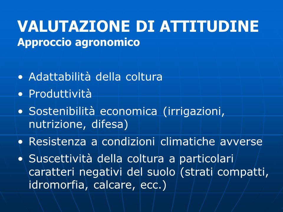 Adattabilità della coltura Produttività Sostenibilità economica (irrigazioni, nutrizione, difesa) Resistenza a condizioni climatiche avverse Suscettiv