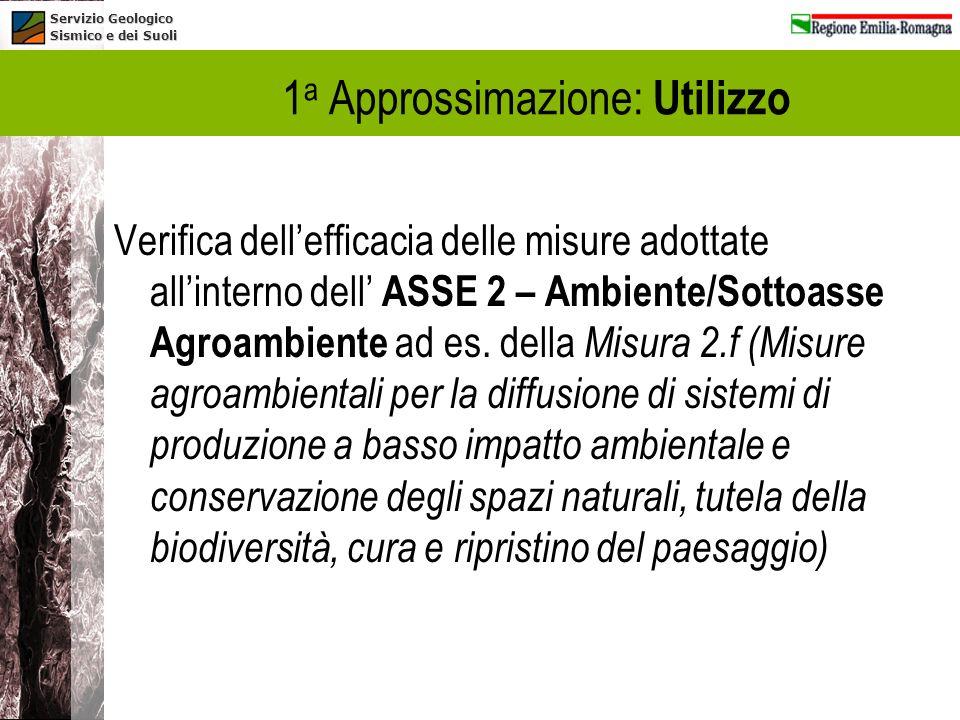 Servizio Geologico Sismico e dei Suoli 1 a Approssimazione: Utilizzo Verifica dellefficacia delle misure adottate allinterno dell ASSE 2 – Ambiente/So