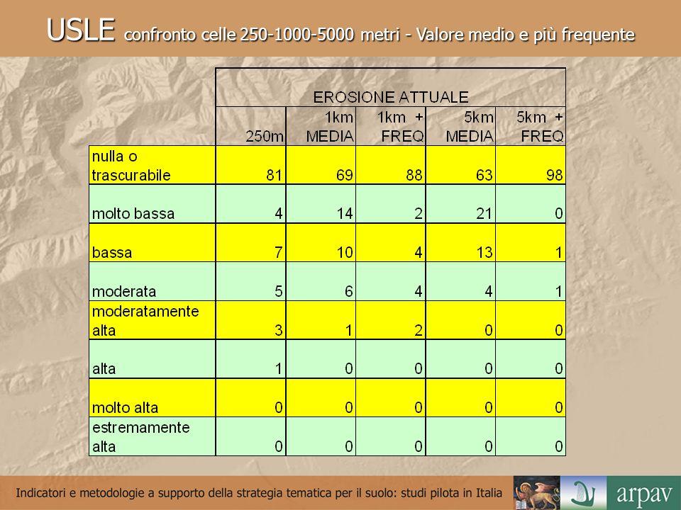 USLE confronto celle 250-1000-5000 metri - Valore medio e più frequente