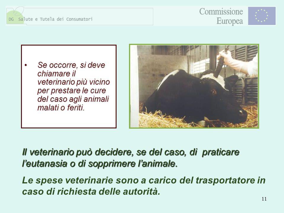 11 Se occorre, si deve chiamare il veterinario più vicino per prestare le cure del caso agli animali malati o feriti.Se occorre, si deve chiamare il v