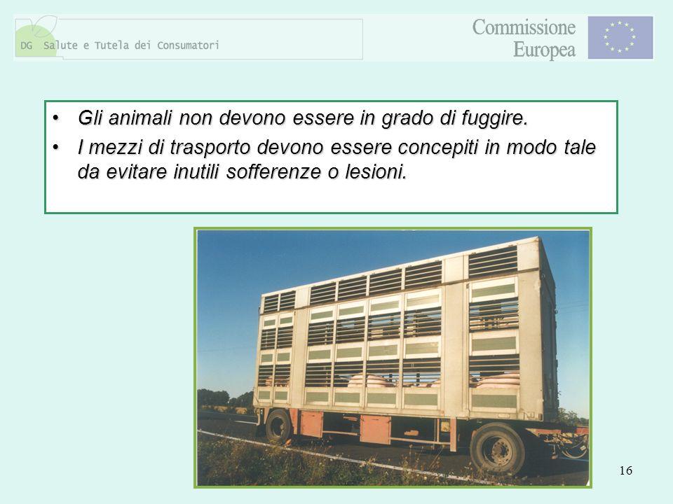 16 Gli animali non devono essere in grado di fuggire.Gli animali non devono essere in grado di fuggire. I mezzi di trasporto devono essere concepiti i