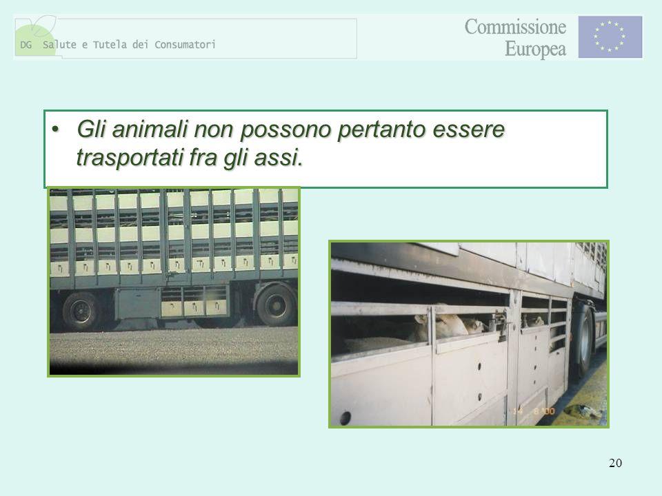 20 Gli animali non possono pertanto essere trasportati fra gli assi.Gli animali non possono pertanto essere trasportati fra gli assi.
